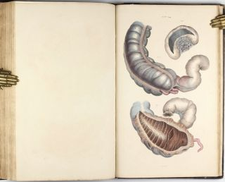 A System of Anatomical Plates of the Human Body, Accompanied with Descriptions and Physiological, Pathological, and Surgical Observations.